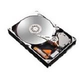 160GB Maxtor STM3160215AS DiamondMax 2MB SATA2