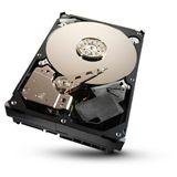 "1000GB Seagate Desktop HDD ST31000524AS 32MB 3.5"" (8.9cm) SATA 6Gb/s"