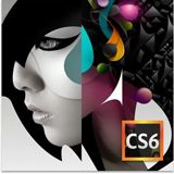 Adobe Creative Suite 6.0 Design Standard 64 Bit Deutsch Grafik EDU-Lizenz PC (DVD)