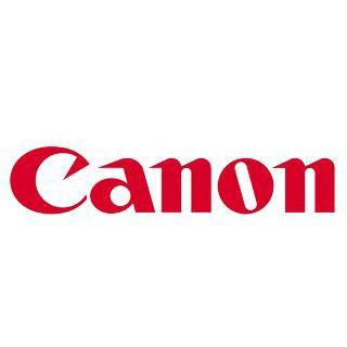 Canon feste Tinte PFI-702GY 2221B005 grau