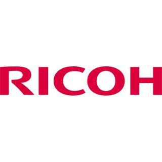Ricoh 402450 Tonersammler Typ 165